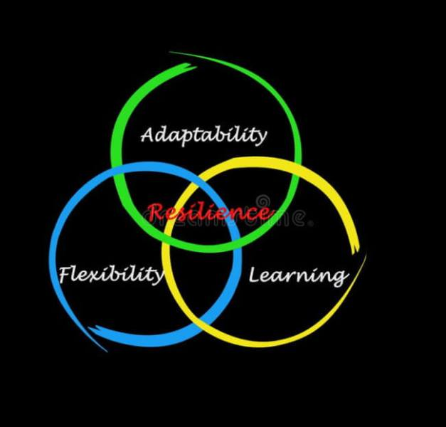 Adaptable, Flexible, and Resilient