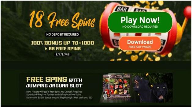 Free spin Bonus at SA casinos online