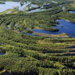 O globálnom význame Sibíri z ekologického hľadiska
