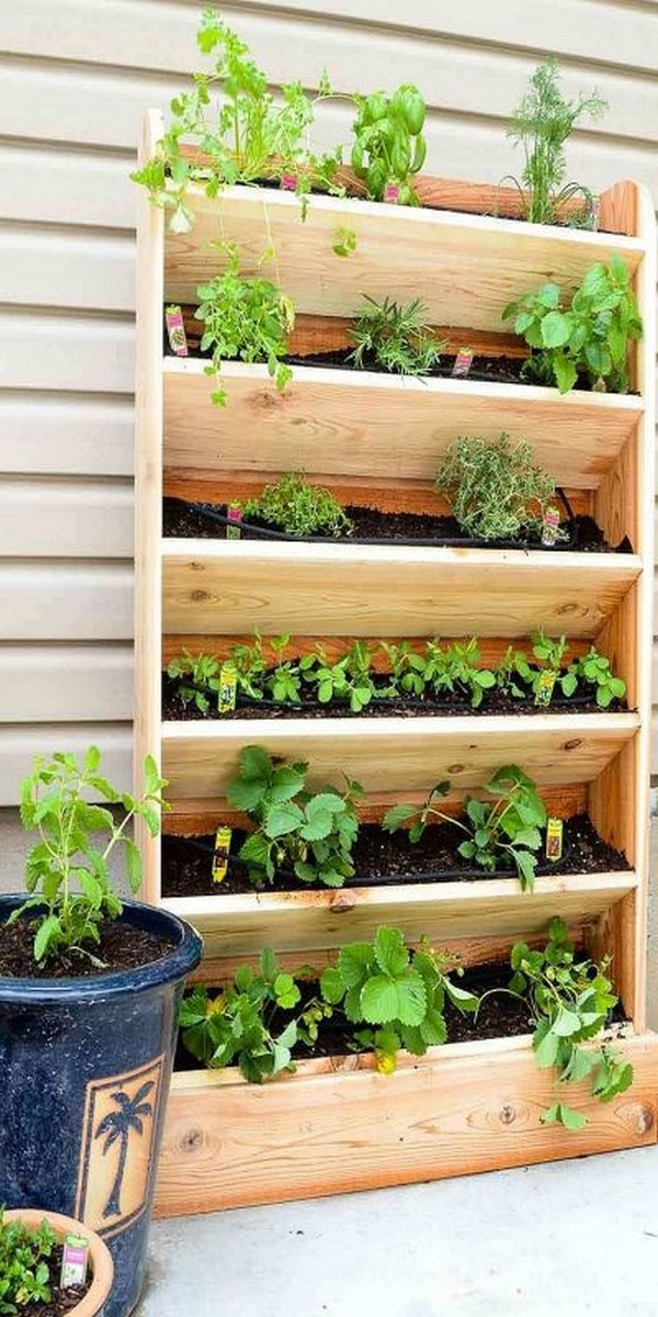 decorative garden projects