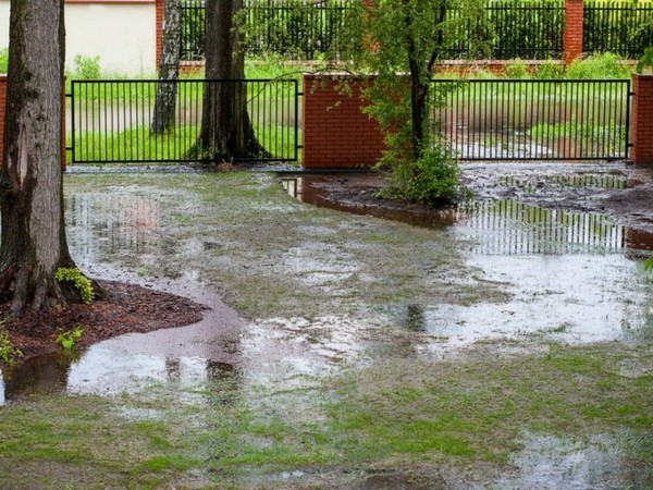 how to dry up a wet yard