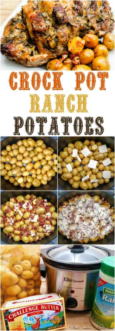 Find these easy crock pot bacon ranch potatoes and a lot more like it @ https://www.slowcookerkitchen.com
