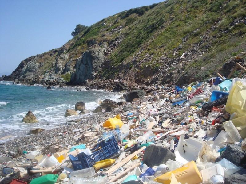 Image result for plastic bottle on beach
