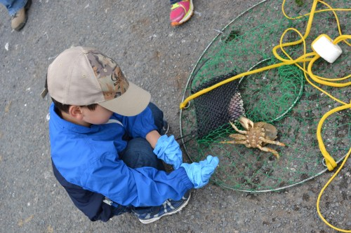 SF_Crabbing_8