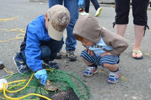 SFBay_Crabbing_9