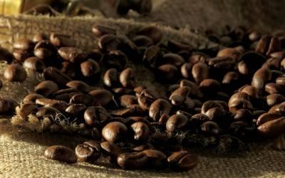 Das Leben ist zu kurz, um schlechten Kaffee zu trinken!