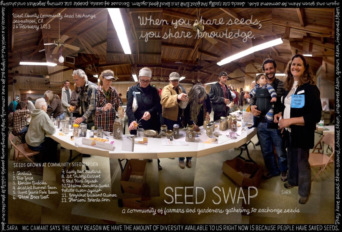 Seed Swap at the Community Seed Exchange