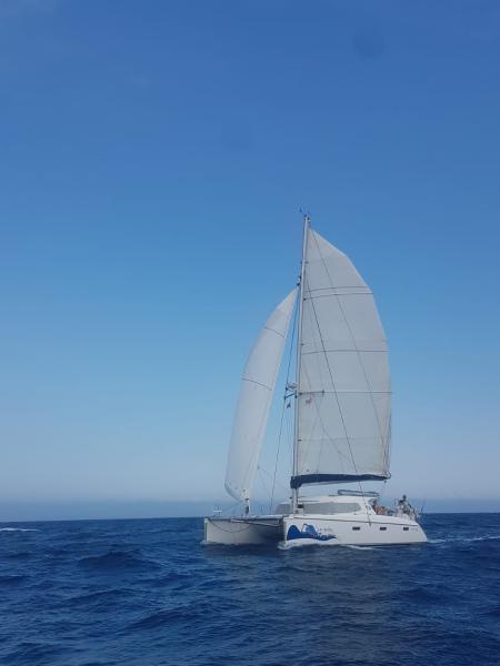 Goose Wing Sailing