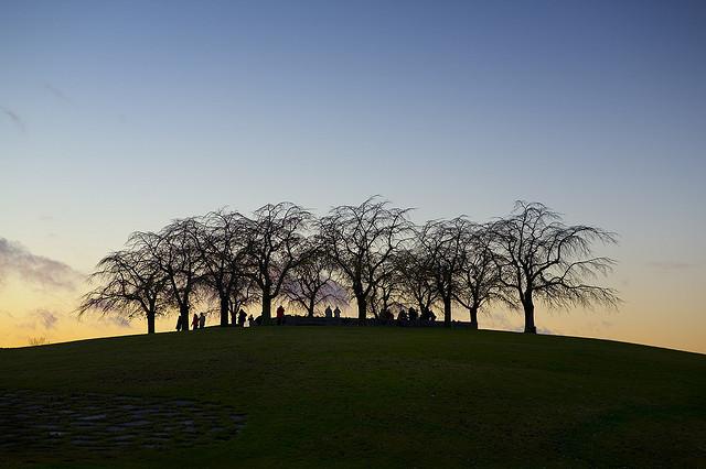 Skogskyrkogården | Photo: Susanne Hallmann