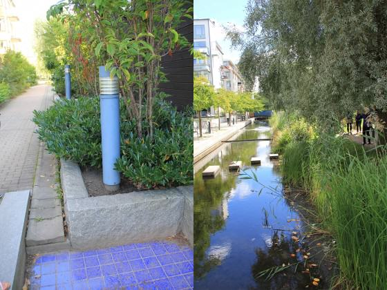 Stormwater management system. Photos: Maria Ignatieva