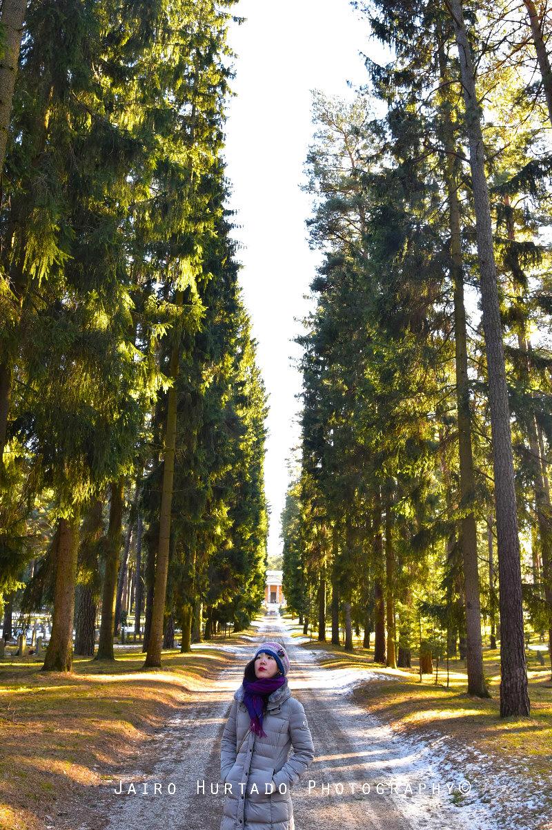 skogkykogarden 3