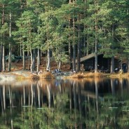 Hiking in Stockholm: Best hiking trails