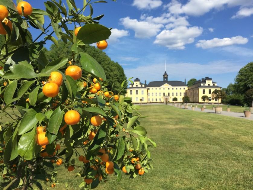 Ulriksal slott photo by Lisa Ferland
