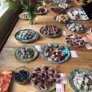 In Search of the Best Swedish Chokladbollar