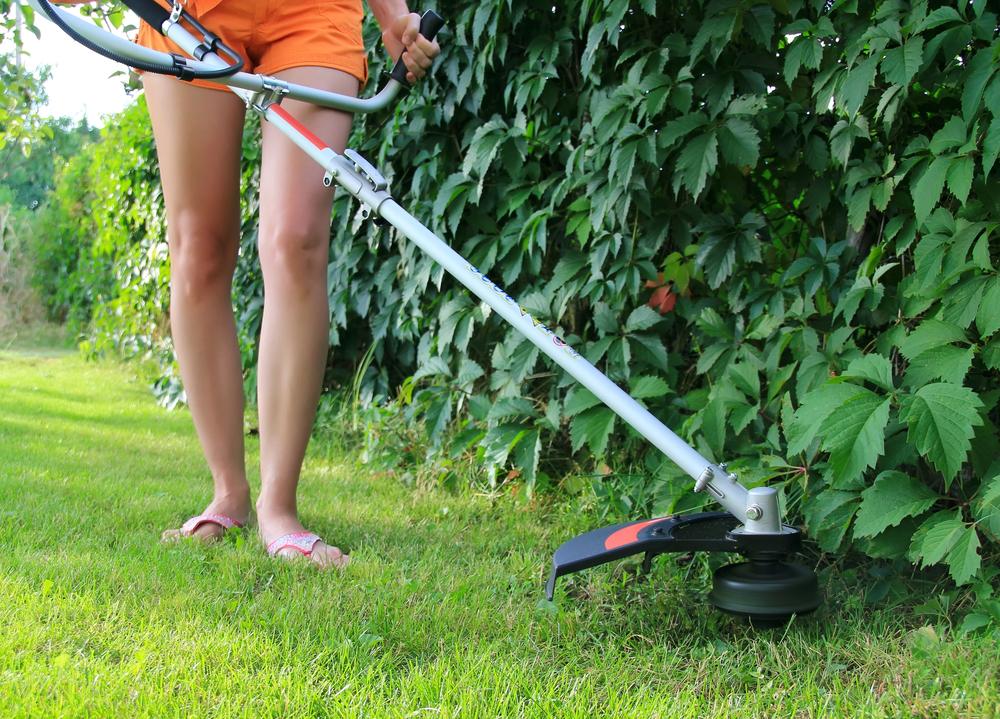 Lawn Care Provider