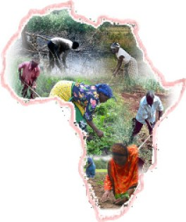 farming africa small