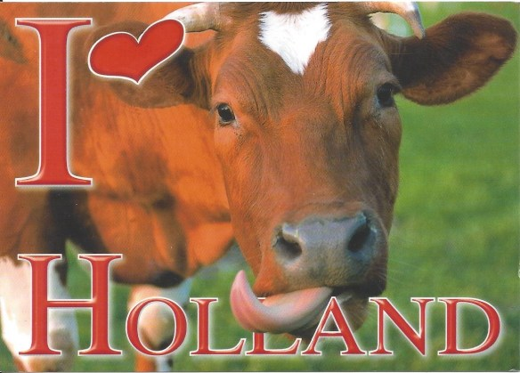 I Love Holland POstcard