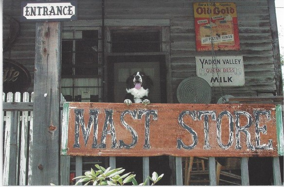 Mast Store with Dog postcard