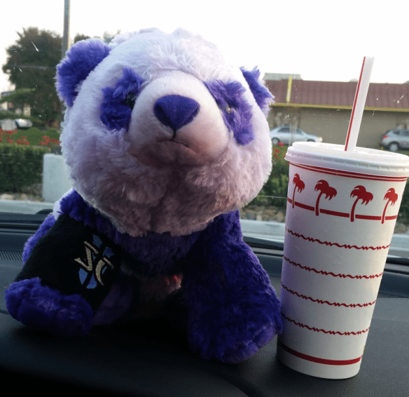 Preston, a purple plush panda, and an In N Out cup