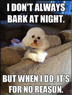 Secret Bark #4