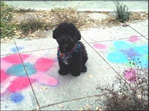chalk art b