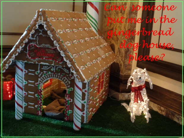 Dog Gingerbread House | Small Poodle at Large | Harper B.