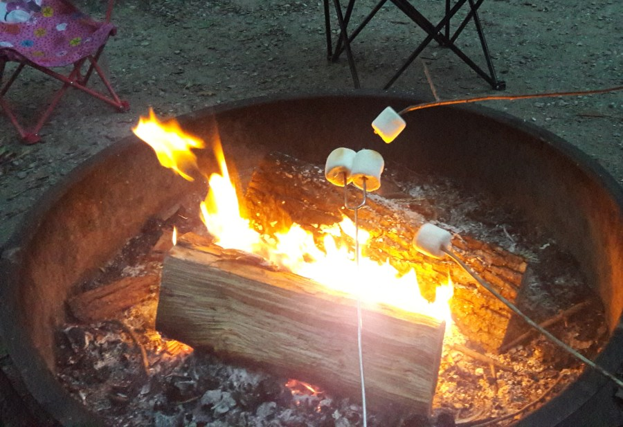 Sharing memories by the fire with smores.