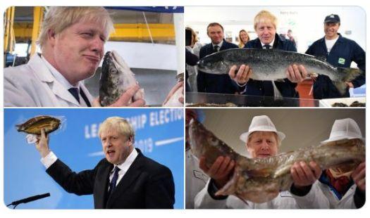 Boris and fish