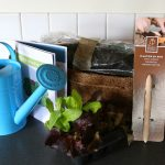 Product Review – Edenbox