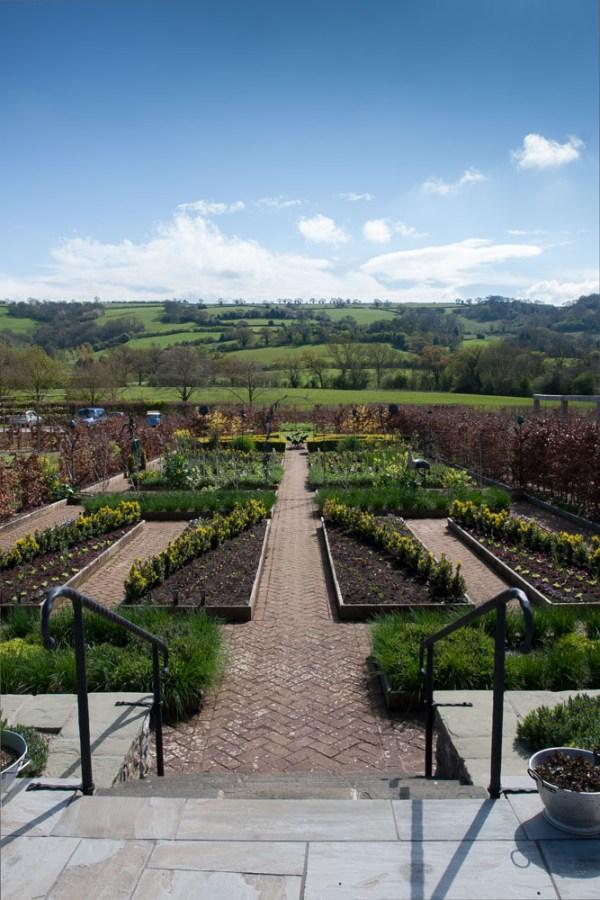 Yeo Valley Organic Gardens