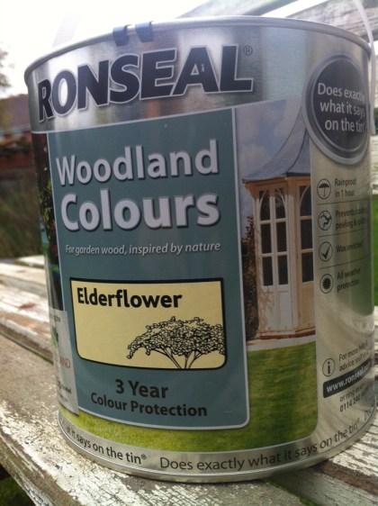 Elderflower Woodland Colour