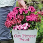 The Cut Flower Patch competition