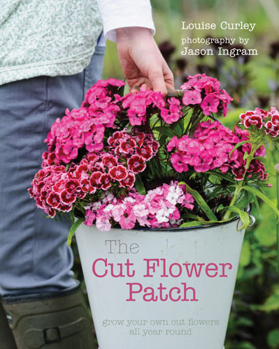 The Cut Flower Patch - Grow flowers all year round
