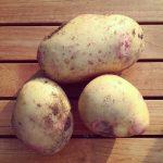Potato Recipes Part One: Vegan Tapas – Patatas a lo Pobre