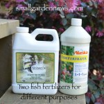 Two kinds of fish emulsion fertilizer have different fertilizer profiles. Choose the right one for your organic garden.