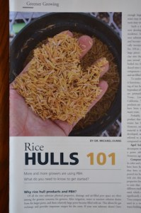 "Rice hulls pictured on the cover of an article titled ""Rice Hulls 101""."
