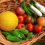 Home garden harvest of summer vegetables includes tomatoes, peppers, eggplants, okra, and melons.