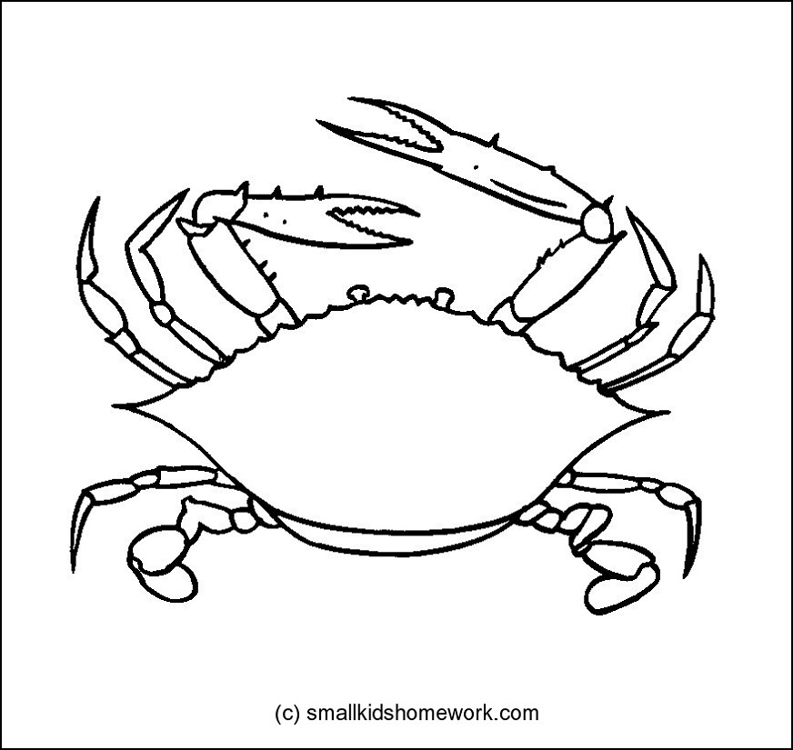 crab outline picture for coloring