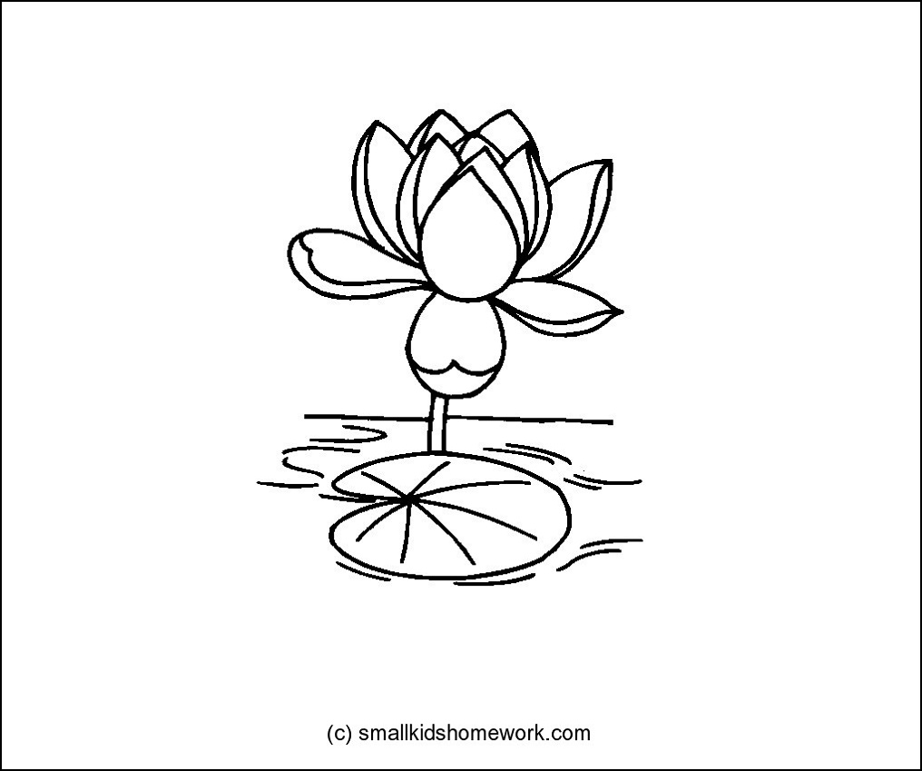 Lotus Flower Outline and Coloring Picture with Interesting