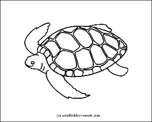 Turtle outline picture for coloring