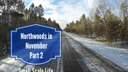 Wisconsin and Minnesota Northwoods in November 2015 - Part 2