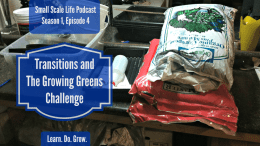 Growing Greens Challenge; Blogging Transitions and Updates