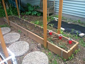 Raised bed; onions; tomatoes; organic; gardening; garden; trellis