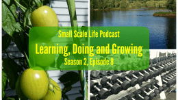 Podcast; gardening; blogging; podcast; learning; doing; growing; updates