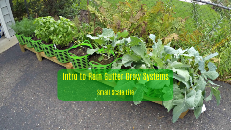 Gardening; Gardening Resources; Raised Beds; Vertical Gardening; Tomatoes; Herbs; Potatoes; Beans; Onions; Peas; Hybrid Rain Gutter Grow System; Rain Gutter Grow Systems; peppers; hydroponics; Larry Hall; Grow Bag Garden System; dill; herbs; jalapenos; wicking beds; Garden Planning