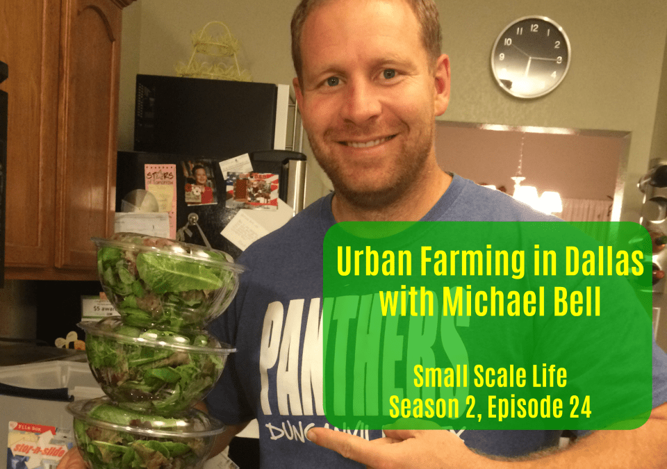 urban farming; urban farm; small business; market garden; Half Acre Farm, Michael Bell; Small Scale Life Podcast; interview, podcast