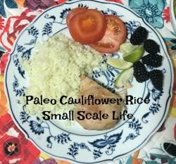 recipes, foodie, dinner, paleo, gluten free, entree, entree recipe, cauliflower rice, rice