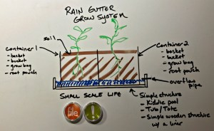 Rain Gutter Grow System, gardening, wicking bed, wicking bed nation