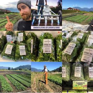 urban farming; urban farm; small business; market garden; Half Acre Farm, Michael Bell; Small Scale Life Podcast; interview, podcast; stocism; stoic; stoic mettle; tribe; friends