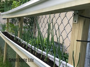 Vertical Gardening, How to Build a Vertical Garden on Fences, Square Foot Gardening, Garden, Urban Gardening, Seeds, Seedlings, Wicking Beds, Raised Beds, Trellis, Rain Gutter Grow Systems, Soils, Compost, Grow What You Eat, Homestead, Urban Homestead, Common Garden Pests, Gutter Garden, vertical garden planters